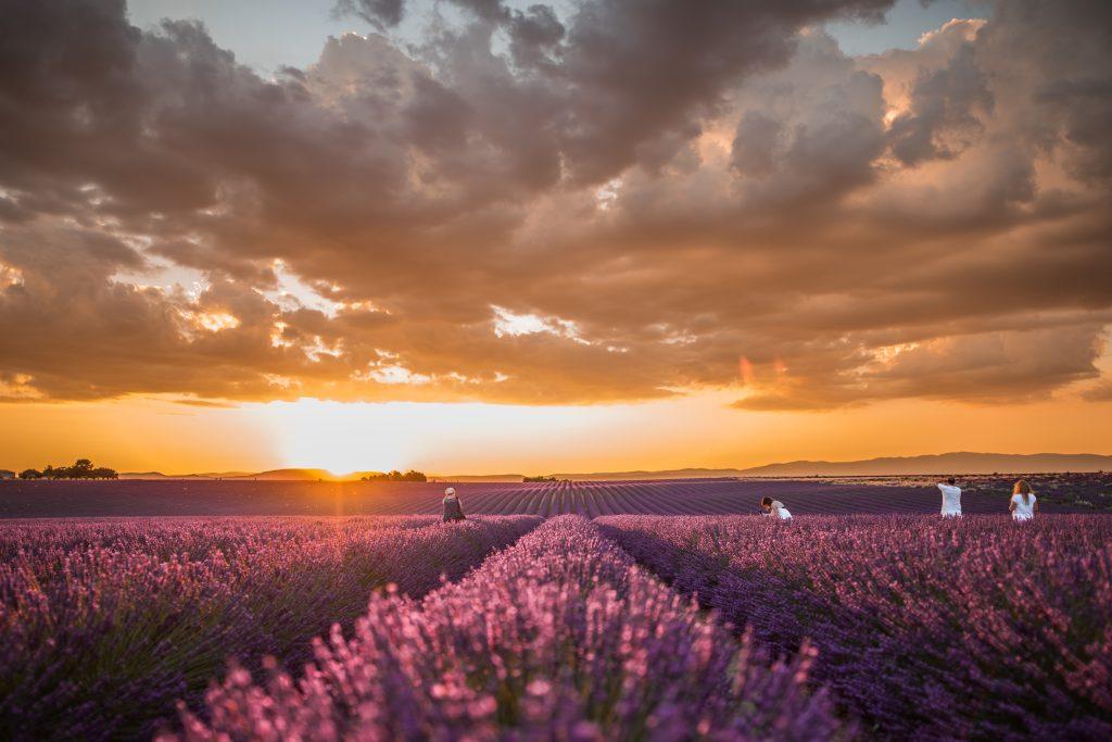 Location d'appart en Provence